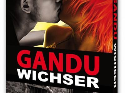 Artwork der DVD für Gandu