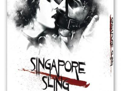 singapore_3d_dvd_ohne