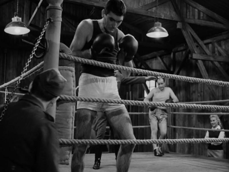 Boxer a smrt.proreshq_132617