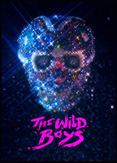 THE WILD BOYS - Poster